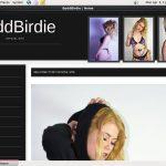 Badd Birdie Cargo Automático