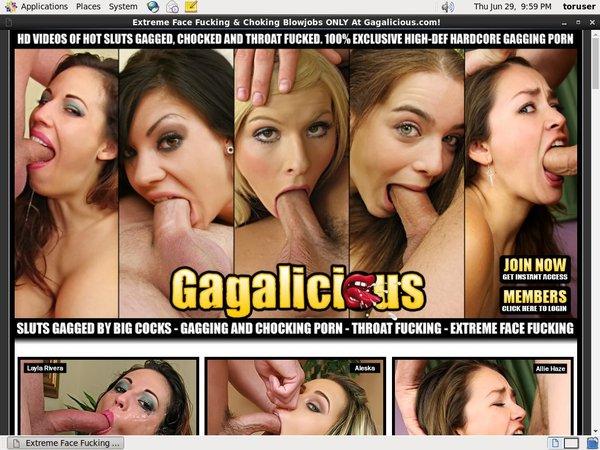 Gagalicious.com Paypal Account
