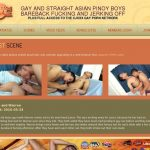 Gayasiantwinkz.com Discount Setup