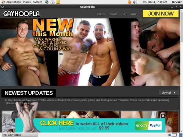 Gay Hoopla Promo Tour
